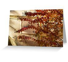 Dainty Branches - Warm Fall Colors - Washington, DC Facades Greeting Card