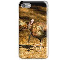 Two Turkey Buddies iPhone Case/Skin