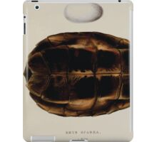 Tortoises terrapins and turtles drawn from life by James de Carle Sowerby and Edward Lear 030 iPad Case/Skin