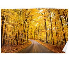 Yellow Road of Fall Poster