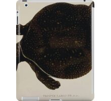 Tortoises terrapins and turtles drawn from life by James de Carle Sowerby and Edward Lear 016 iPad Case/Skin
