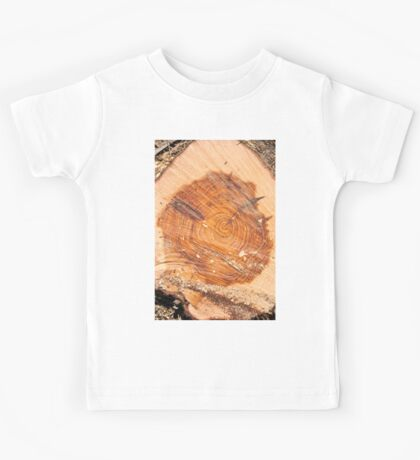 section through a pine tree trunk This shows marked growth rings.  Kids Tee