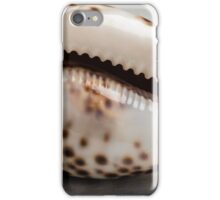 An empty tiger cowrie seashell iPhone Case/Skin