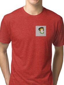 The Color of Pomegranates Tri-blend T-Shirt