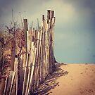 Beach fence by Jonesyinc