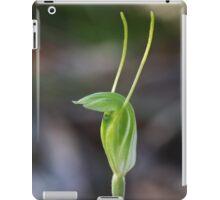 Dwarf Greenhood - Linguella nana iPad Case/Skin