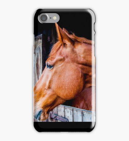 Equine 4 iPhone Case/Skin