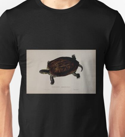 Tortoises terrapins and turtles drawn from life by James de Carle Sowerby and Edward Lear 023 Unisex T-Shirt