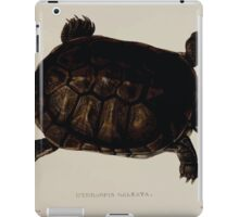 Tortoises terrapins and turtles drawn from life by James de Carle Sowerby and Edward Lear 050 iPad Case/Skin
