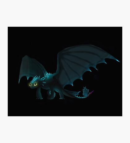 Alpha Toothless Photographic Print