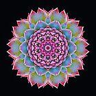 Cactus Kaleidoscope by fantasytripp