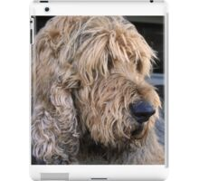 ..an otterhound.. iPad Case/Skin