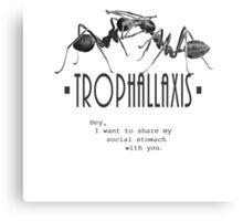 Trophallaxis Canvas Print