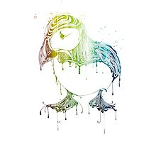 RAVING PUFFIN Photographic Print
