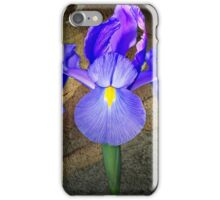 Rhapsody in Blue iPhone Case/Skin