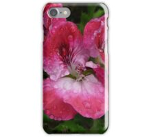 Pelargonium sunset iPhone Case/Skin