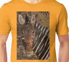 Chobe Zebra - Coloured Pencil Unisex T-Shirt
