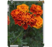 Marigolds iPad Case/Skin