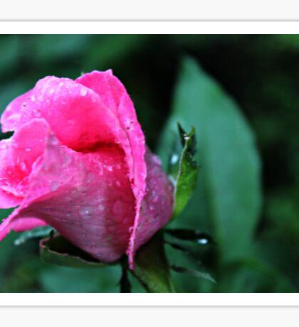 """Rose Of Hope"" Sticker"