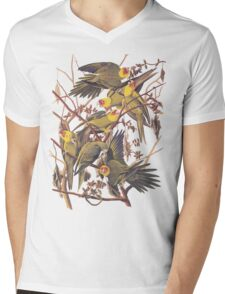 Carolina Parakeet Audubon Vintage Bookplate Mens V-Neck T-Shirt
