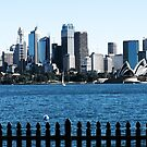 Sydney by Sandro Rossi
