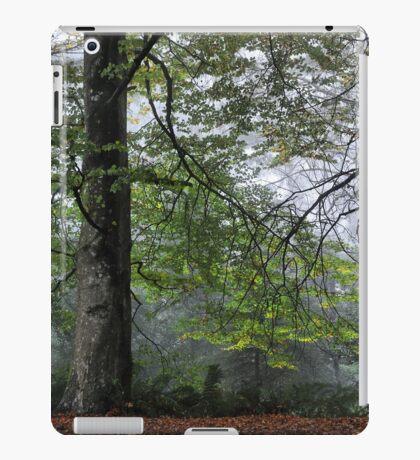 Magestic - Mt Wilson NSW Australia iPad Case/Skin