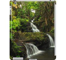 Onomea Falls iPad Case/Skin