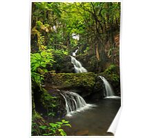 Onomea Falls Poster