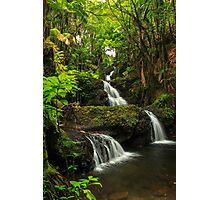 Onomea Falls Photographic Print