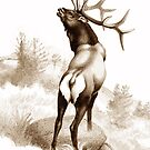 The Angry Elk (or Wapiti) by Patricia Howitt