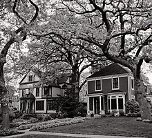 Side by Side, Oak Park Chicago by Norman Repacholi