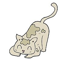 cartoon cat playing Photographic Print