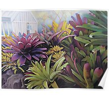 Preying in the Bromeliads Poster