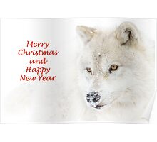 Christmas Arctic wolf Poster