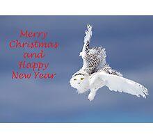 Christmas Snowy Owl Photographic Print