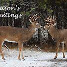 Season's Greetings deer by Jim Cumming