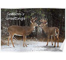 Season's Greetings deer Poster