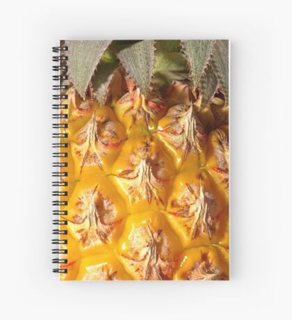 Close up and details of a pineapple Spiral Notebook