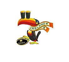 Guinness Irish Rugby Toucan Photographic Print