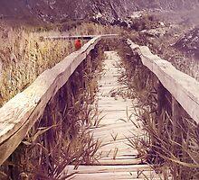 Abandoned Path by Carol Vega