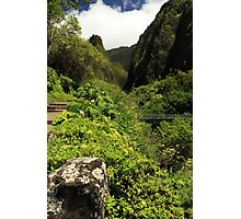 A Bridge To The Iao Needle Photographic Print