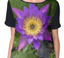 Nymphaea. Plant flower close up Chiffon Top