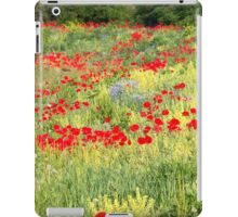 Roadside Glory iPad Case/Skin