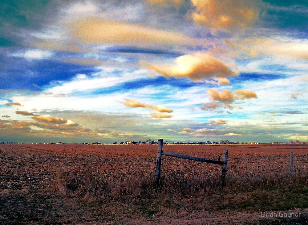 Fields Under a Swirling Sky by Brian Gaynor