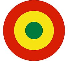 Roundel of Bolivian Air Force  Photographic Print