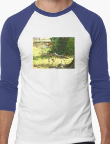 Curlews and young at Wonga Beach, North  Queenland Men's Baseball ¾ T-Shirt