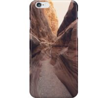 Another Path iPhone Case/Skin