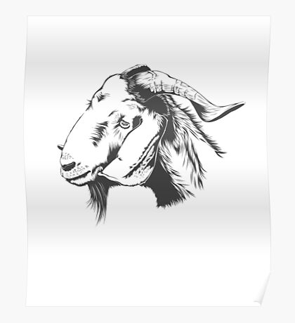 fUNNY Lovely Cute Goat Sketched Poster