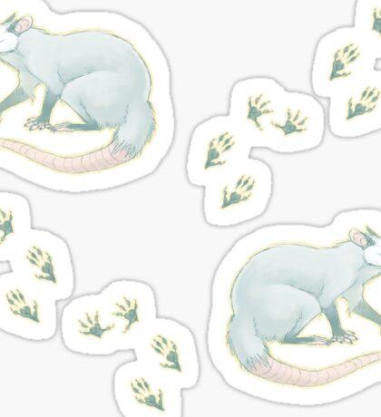 Possum Prints Sticker