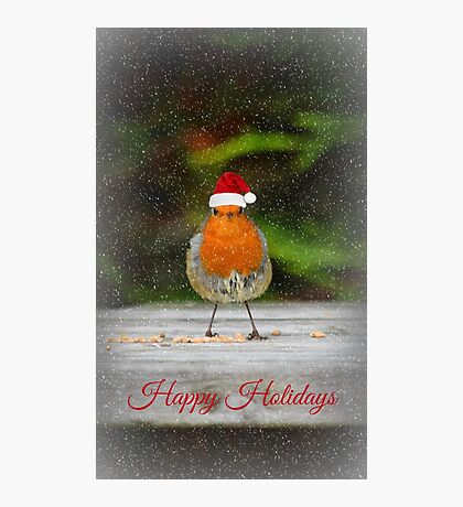 Holiday Robin Photographic Print